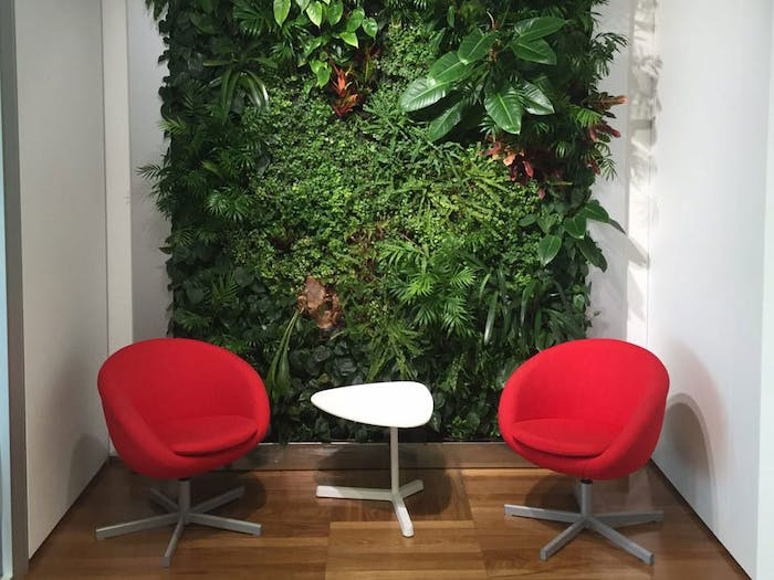 """Full wall garden wall design in a modern conversation area.<span class=""""sr-only""""> (opened in a new window/tab)</span>"""