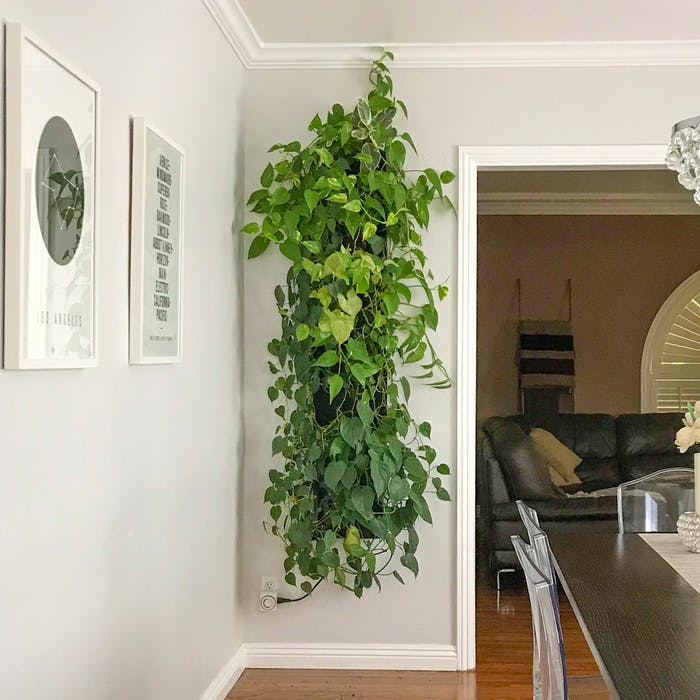 """Garden wall design as a hanging artwork.<span class=""""sr-only""""> (opened in a new window/tab)</span>"""