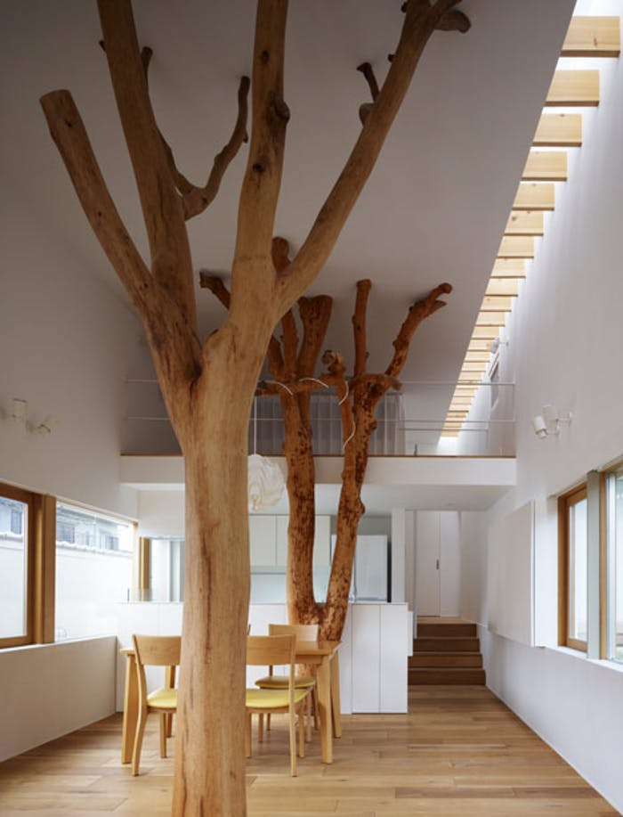 "Dining room with trees being part of the interior design, stunning application of biophilic design.<span class=""sr-only""> (opened in a new window/tab)</span>"