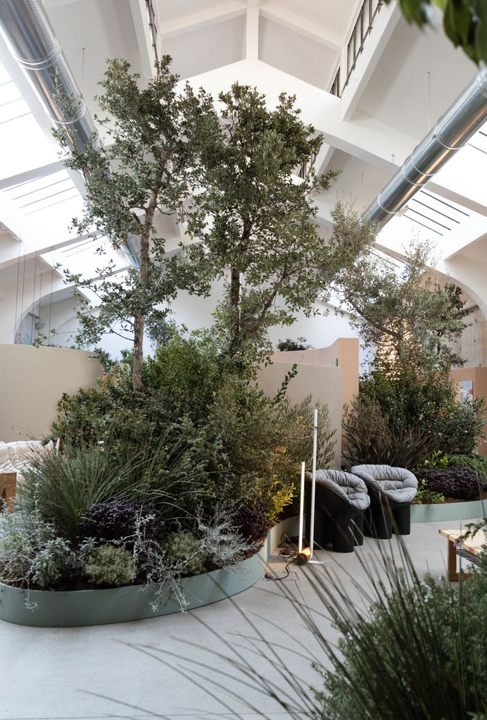 """View of the exhibition, with furniture peeking through plants.<span class=""""sr-only""""> (opened in a new window/tab)</span>"""