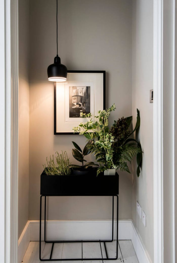 """Plain wall at the end of a corridor given new life with a big planter full of greenery.<span class=""""sr-only""""> (opened in a new window/tab)</span>"""