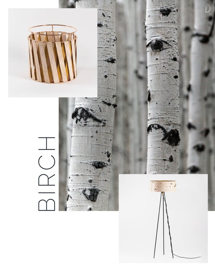 """Birch bark home items: a floor lamp and a small basket.<span class=""""sr-only""""> (opened in a new window/tab)</span>"""