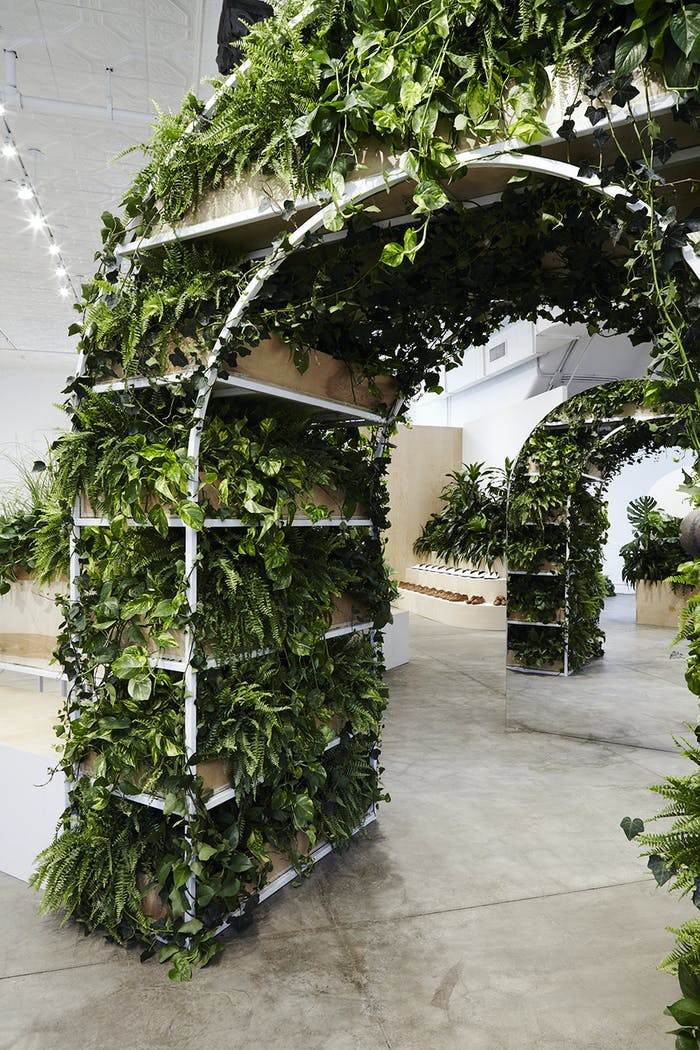 """Store with plant-filled arched creating a path in the open space.<span class=""""sr-only""""> (opened in a new window/tab)</span>"""