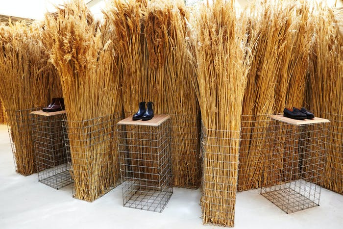 """Store with pampa grass used as partitions.<span class=""""sr-only""""> (opened in a new window/tab)</span>"""