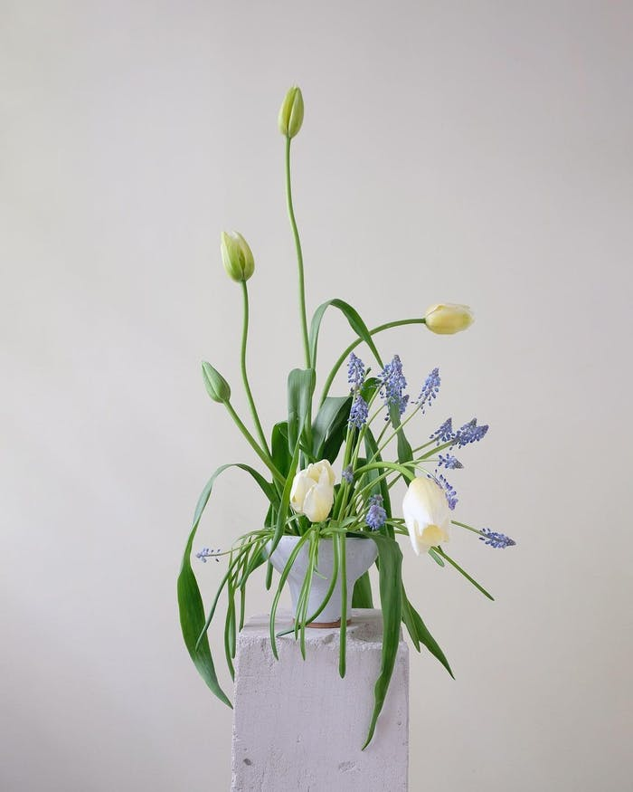 """Full arrangement with white tulips and purple tiny flowers.<span class=""""sr-only""""> (opened in a new window/tab)</span>"""
