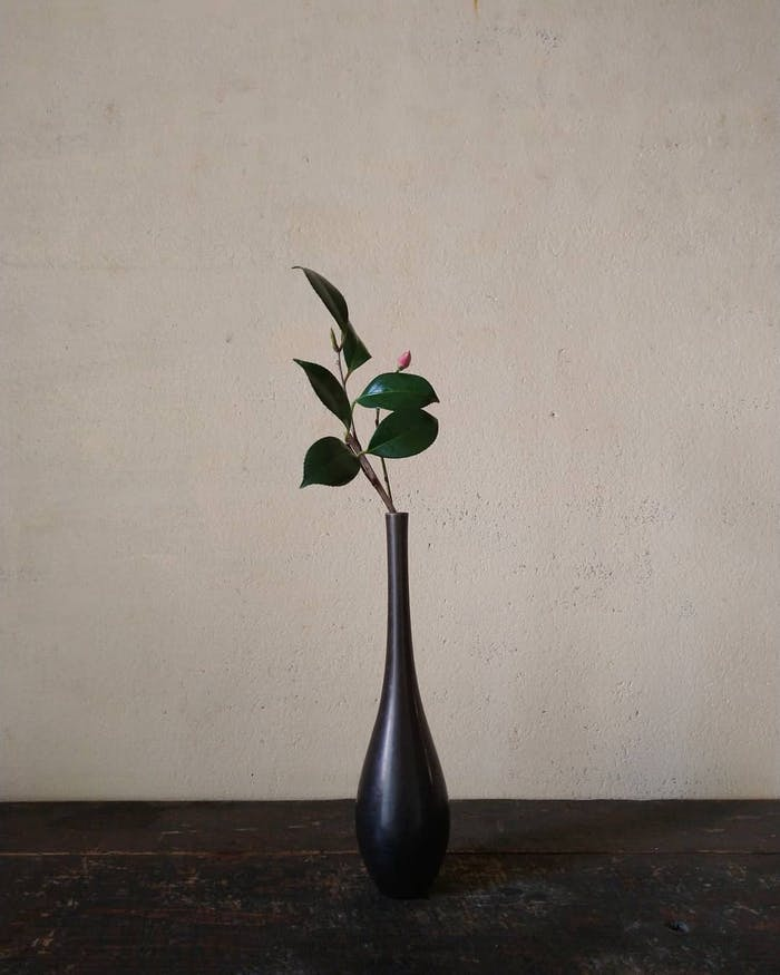 """Minimal arrangement with a single branch and a growing bud.<span class=""""sr-only""""> (opened in a new window/tab)</span>"""