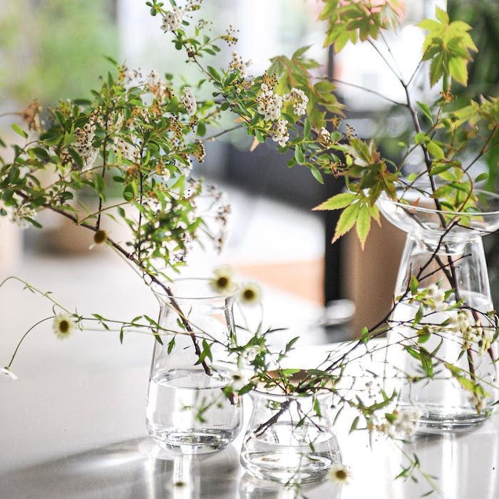 """Simple greenery strands in clear vases.<span class=""""sr-only""""> (opened in a new window/tab)</span>"""