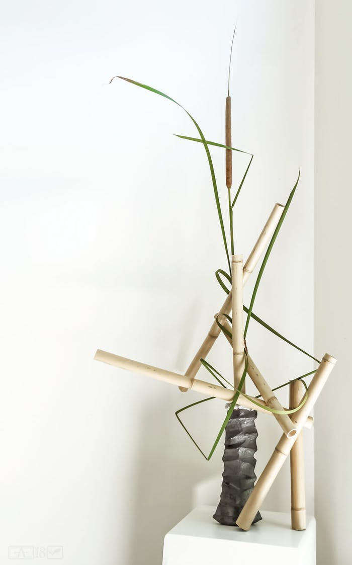 """Flowe arrangement with one single strand bended.<span class=""""sr-only""""> (opened in a new window/tab)</span>"""