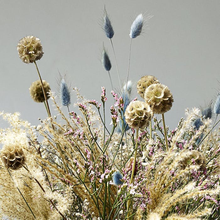 """Close-up of colourful flowers and pampas grass.<span class=""""sr-only""""> (opened in a new window/tab)</span>"""