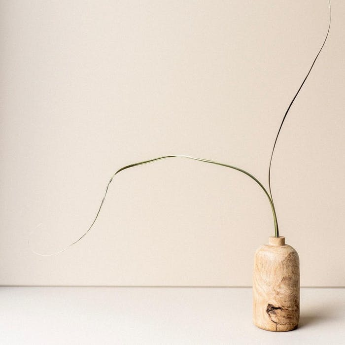 """Two strands of grass arranged into a wooden vase.<span class=""""sr-only""""> (opened in a new window/tab)</span>"""