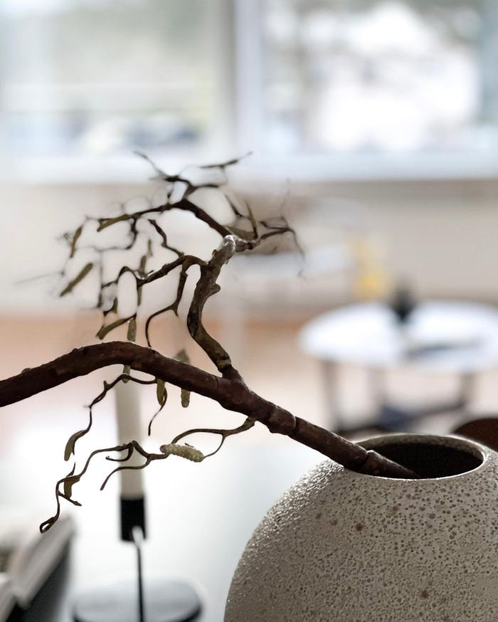 """Close-up of simple branches arranged into a vase.<span class=""""sr-only""""> (opened in a new window/tab)</span>"""