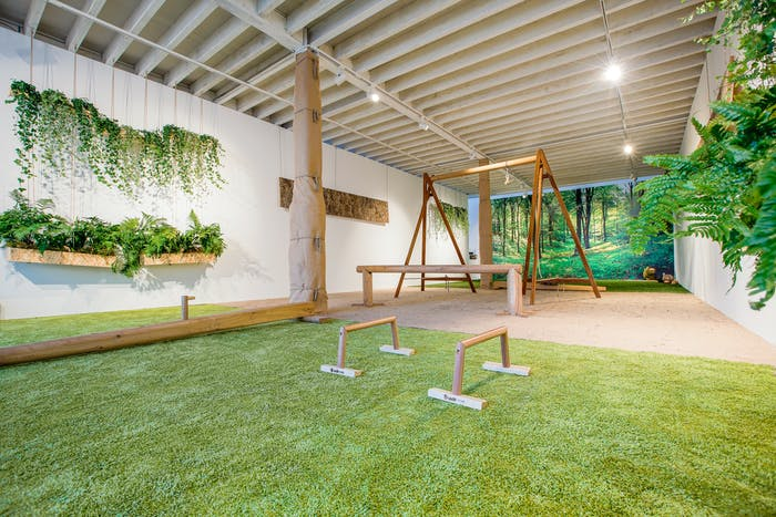 "View of a biophilic gym with plants hanging on the walls, a mural depicting a soothing forest and grass-like carpet.<span class=""sr-only""> (opened in a new window/tab)</span>"