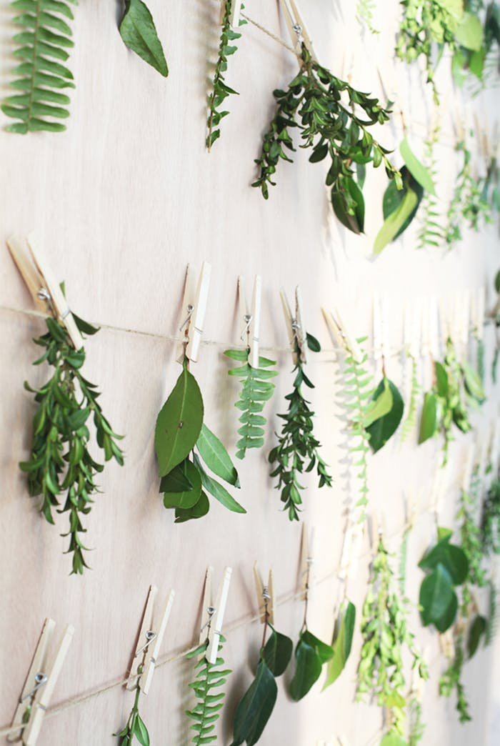 """Leaves hung on a wall with pins and a string.<span class=""""sr-only""""> (opened in a new window/tab)</span>"""