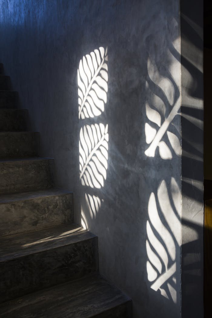 """Leaf-shaped cuts in a wall draw with sunlight on interior surfaces.<span class=""""sr-only""""> (opened in a new window/tab)</span>"""