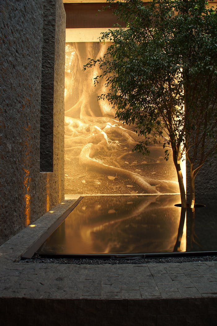 """Water pond reflecting on the wall.<span class=""""sr-only""""> (opened in a new window/tab)</span>"""