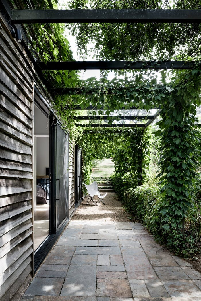 """Small pation shaded by vines.<span class=""""sr-only""""> (opened in a new window/tab)</span>"""