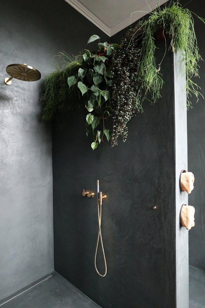 """Draping plants add texture to the smooth surface of a shower wall.<span class=""""sr-only""""> (opened in a new window/tab)</span>"""