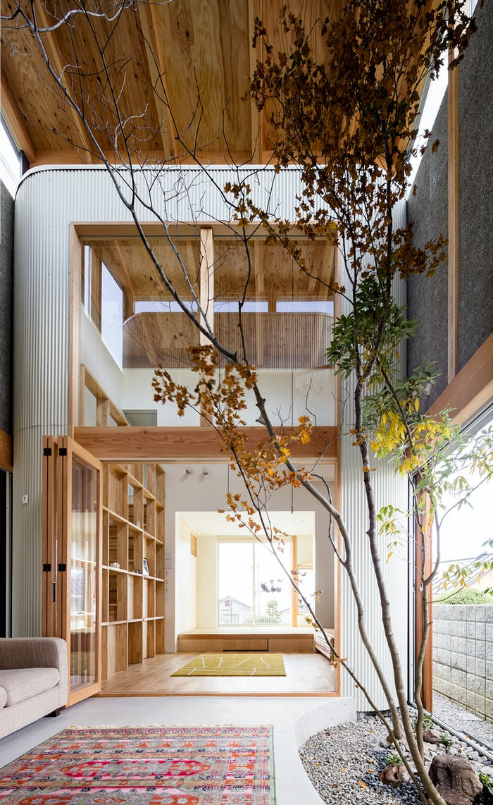 """Room with tall plants highlighting the high ceilings.<span class=""""sr-only""""> (opened in a new window/tab)</span>"""