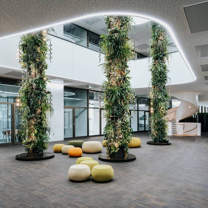 """Columns in the middle of a room entirely covered with plants.<span class=""""sr-only""""> (opened in a new window/tab)</span>"""