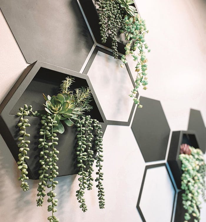 """Wall frame filled with living plants.<span class=""""sr-only""""> (opened in a new window/tab)</span>"""