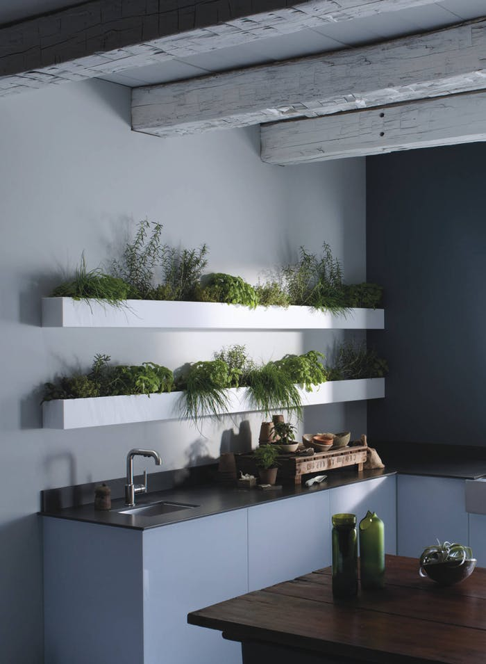"""Hanging herb planters in a contemporary kitchen.<span class=""""sr-only""""> (opened in a new window/tab)</span>"""