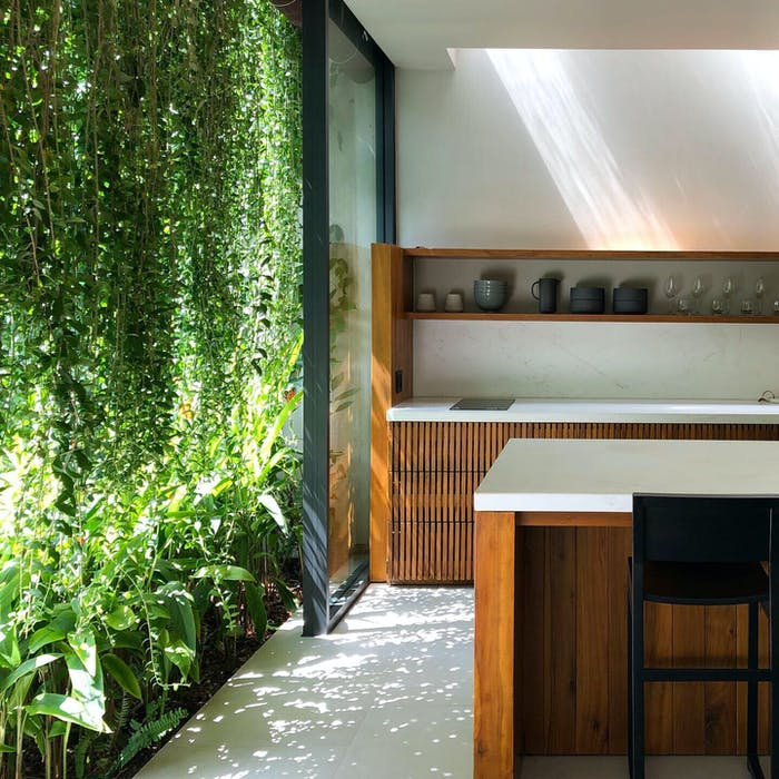 """Kitchen shaded by outdoor draping plants.<span class=""""sr-only""""> (opened in a new window/tab)</span>"""
