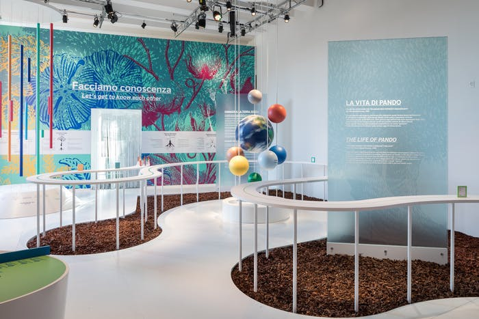 """Photo of the first room of the Nation of Plants installation.<span class=""""sr-only""""> (opened in a new window/tab)</span>"""