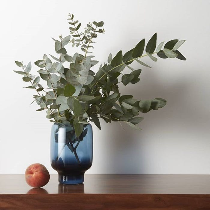 """Eucalyptus branches in a blue vase.<span class=""""sr-only""""> (opened in a new window/tab)</span>"""
