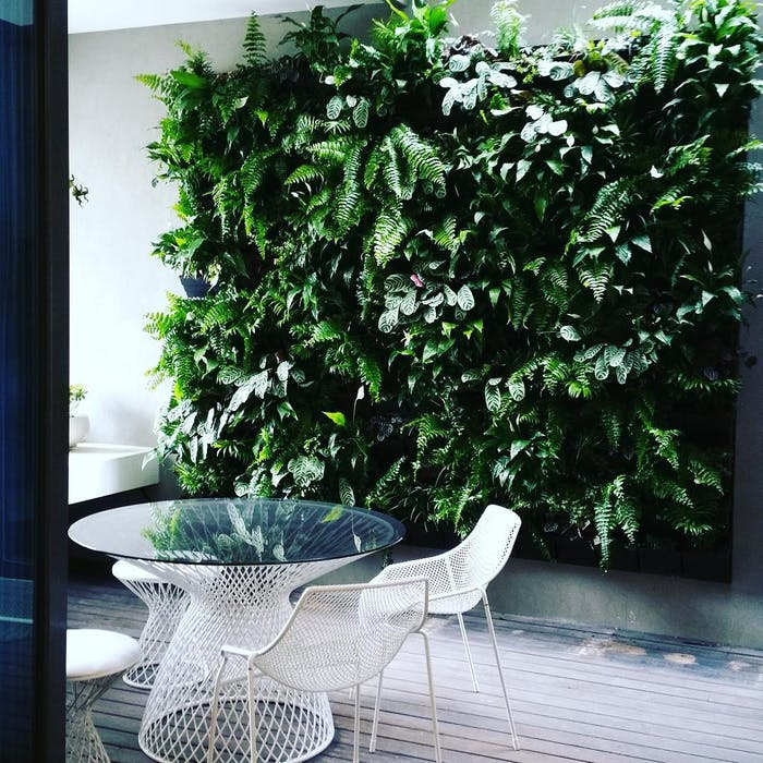 "Chair in a veranda with a huge vertical garden as a backdrop.<span class=""sr-only""> (opened in a new window/tab)</span>"