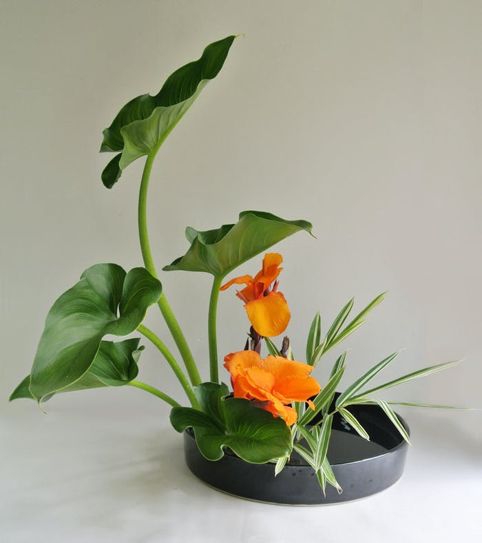 """Ikebana arrangement, perfect décor in a minimalist interior.<span class=""""sr-only""""> (opened in a new window/tab)</span>"""