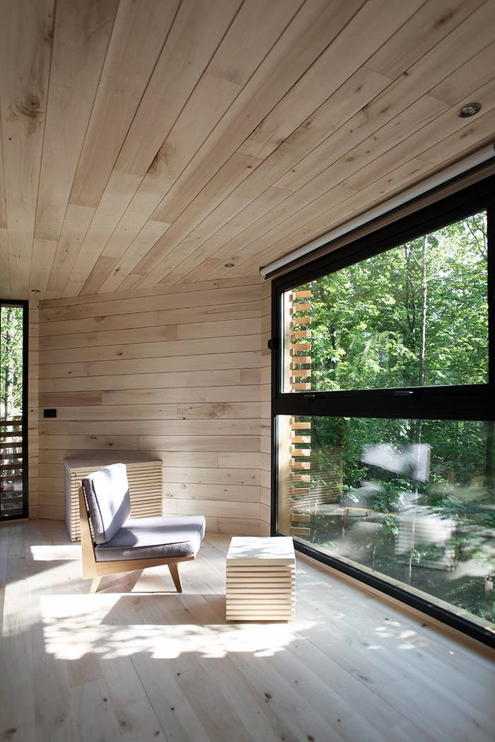 """View of the living area looking into the forest.<span class=""""sr-only""""> (opened in a new window/tab)</span>"""