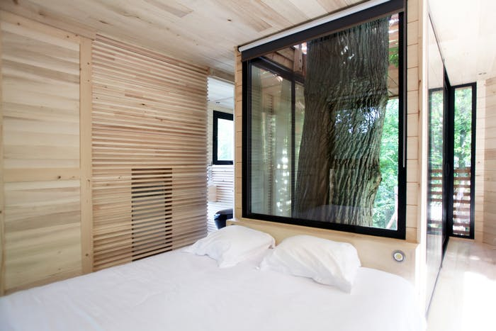 """View of the bedroom, with the oak tree poking behind the bed.<span class=""""sr-only""""> (opened in a new window/tab)</span>"""