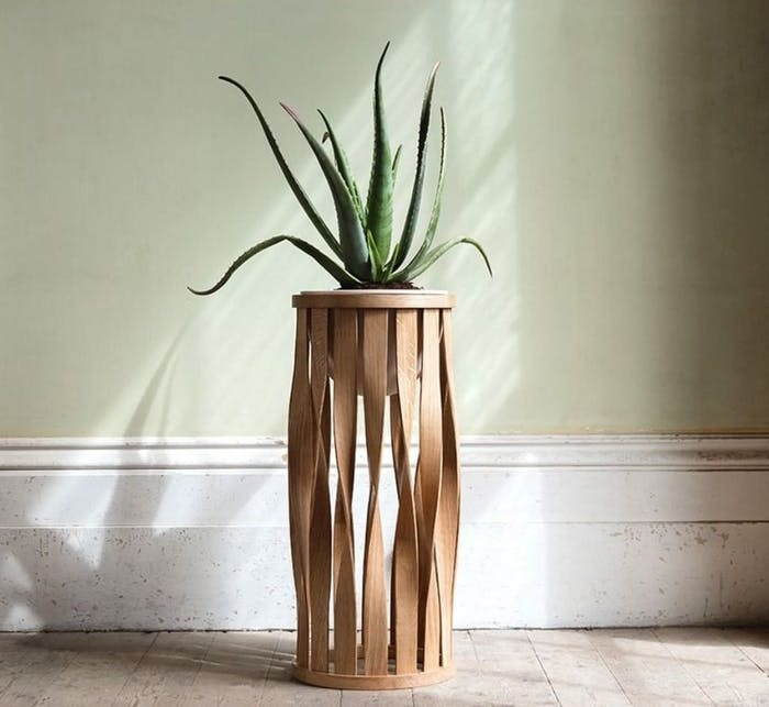 "Aloe vera plant on a tall planter.<span class=""sr-only""> (opened in a new window/tab)</span>"