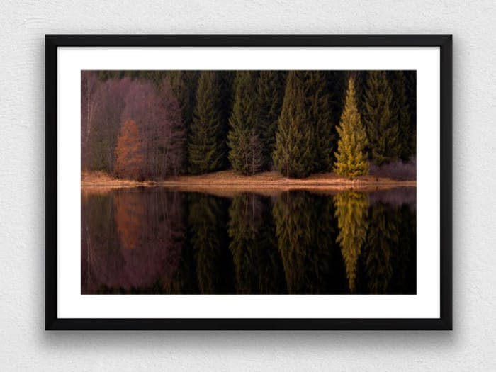 "Printed and framed photography of trees reflecting into water.<span class=""sr-only""> (opened in a new window/tab)</span>"