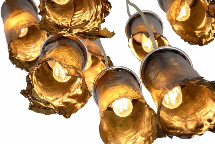 """View from below of pendant algae lamps, showing the interesting light reflection on the surface.<span class=""""sr-only""""> (opened in a new window/tab)</span>"""