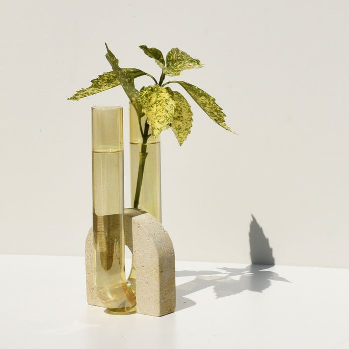 """Vase with greenery inside.<span class=""""sr-only""""> (opened in a new window/tab)</span>"""