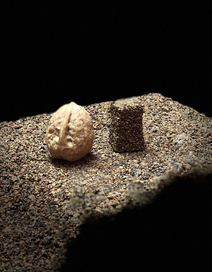 "A piece of Keep Life with a nut on top.<span class=""sr-only""> (opened in a new window/tab)</span>"