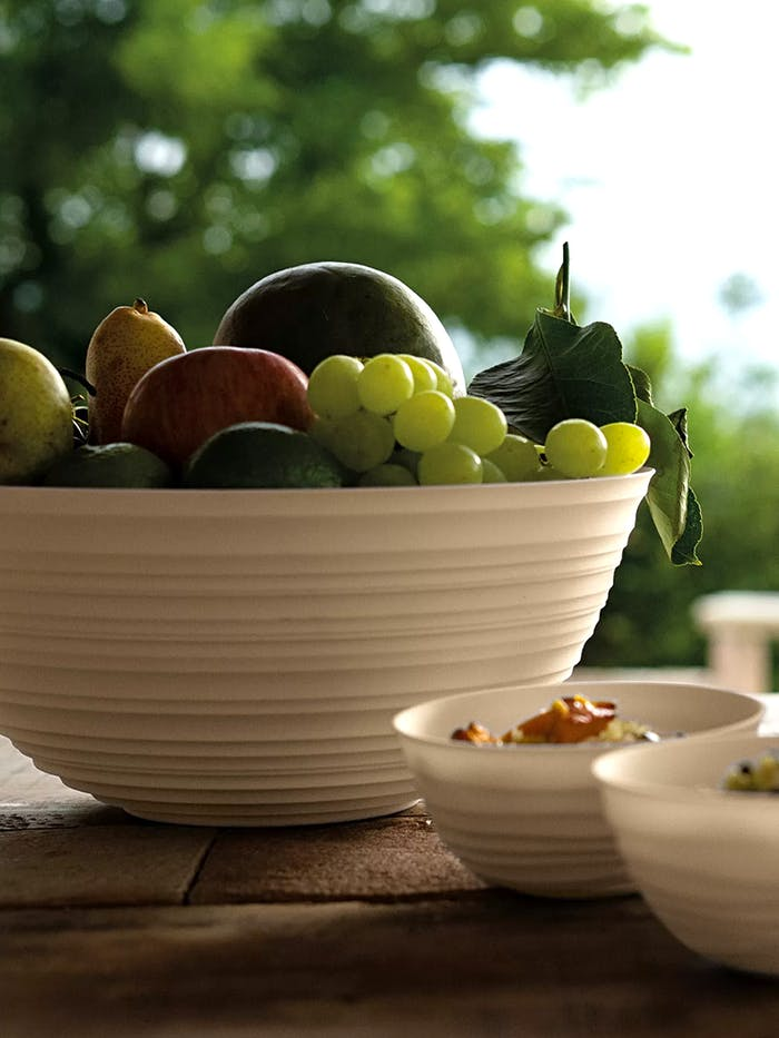 """Recycled plastic bowl containing fruits.<span class=""""sr-only""""> (opened in a new window/tab)</span>"""