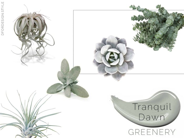 "Moodboard showing all the above-mentioned plants to add Tranquil Dawn with greenery.<span class=""sr-only""> (opened in a new window/tab)</span>"
