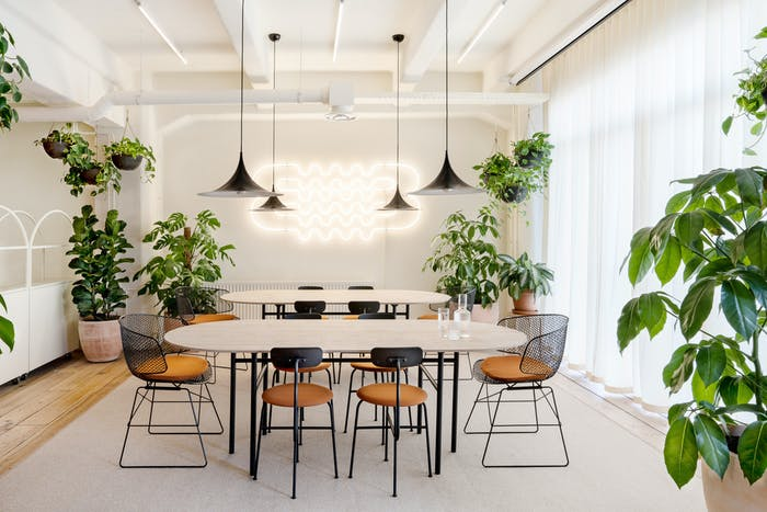 """Conference room with plenty of plants and a welcoming feel.<span class=""""sr-only""""> (opened in a new window/tab)</span>"""
