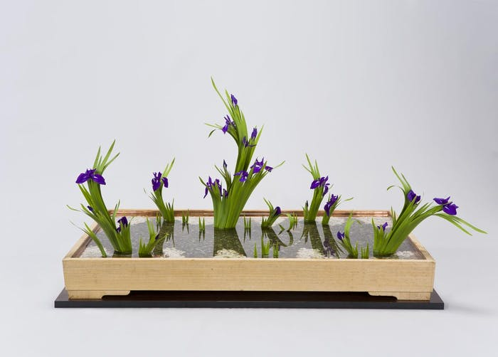"""Small Ikebana arrangement, perfect décor in a minimalist interior.<span class=""""sr-only""""> (opened in a new window/tab)</span>"""