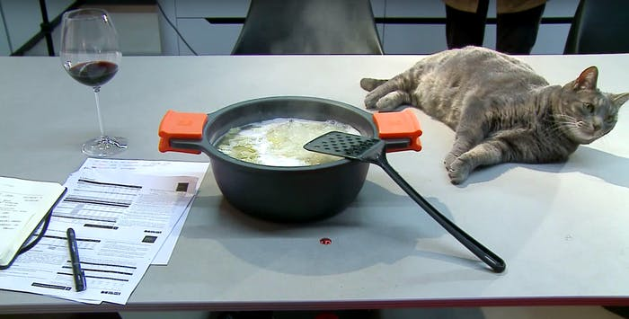 """In an invisible kitchen with hidden induction, pans, papers and even a cat can sit on the same surface at the same time!<span class=""""sr-only""""> (opened in a new window/tab)</span>"""